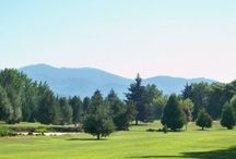 Rogue Valley Golf Courses / Looking for a Golf Course in the Rogue Valley?  Click on any link below to visit the website for any of these fine golfing establishments!