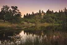 Winter 2012 Vistas / by The Land Report Magazine