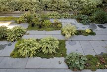 outdoor  / landscape architecture & patio design