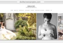 Divi Theme website photography examples