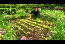 záhrada na yotube