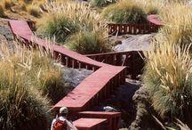 Boardwalk / access way