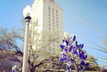 Deep in the heart of {Texas}  / by Brittney Lewallen