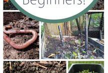 Composting / worm farming