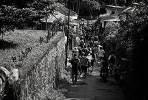 Odyssey Bali - West Island School - Sudaji - Day 4 - CLIMB
