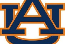 War Eagle!!! / by Shannon Motes