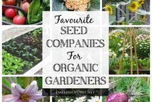Gardening: Seeds, Everything You Always Wanted to Know / by Steelers Sage