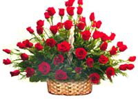 Friendship Day Gifts / Send Friendship Day Gifts to Ahmedabad and all over Gujarat
