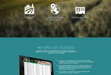 Webdesign agricole
