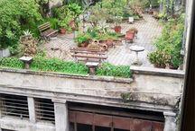 roofgarden - daktuin