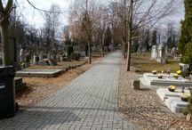 Hřbitov Teplice