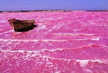 #CasaPOP #PinkColorStory