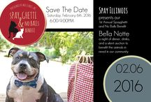 Spayghetti and No Balls Benefit / Join Spay Illinois at our 1st Annual Spayghetti and No Balls Benefit dinner and silent auction. Proceeds benefit the animals in need in Illinois.