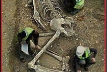 Nephilim / Interested to learn more