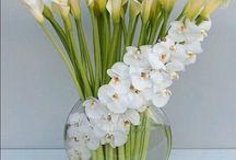 flores que te quero / arranjos, para qualquer ambiente!
