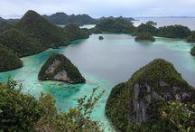 Tavel / Raja Ampat, Papua, Indonesia