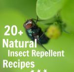 Green Insect Repellant