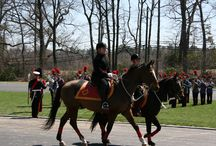 Open House and Parade April 2015 / by Valley Forge Military Academy & College