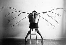 wings in art / by ingrid peulen