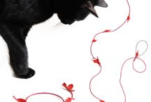 . design4paws . Cat Playing Accessories