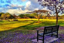 Brisbane Parks / Beautiful parks and pretty gardens