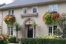 Curb Appeal / by Vivienne Wagner {The V Spot Blog}
