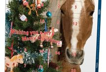 Christmas Gifts / Ideal Christmas gifts for that horse mad person in your life!