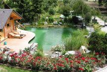 Pools , ponds, / Suyla ilgili herşey