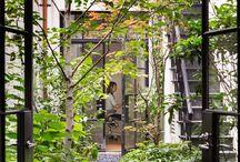 jardim interno sala