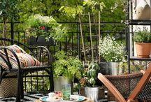 Sommer auf dem Balkon / Balkon