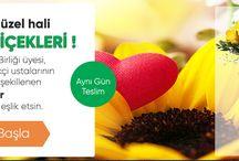 Çiçek Gönder / Türkiye genelinde çiçek gönderilen tüm bölgeler ve bölge çiçekçileri