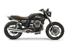 Moto Guzzi V7 & custom