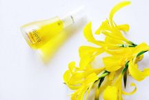 Summer / Be bright and glowing this summer with The Jojoba company