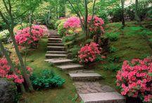 Japaneese gardens