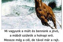 Lovak! ❤
