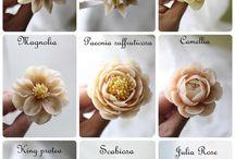 bean flower ideas