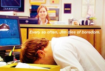 I heart The Office / I love the TV show The Office. At times, this show makes me laugh SO hard I cry :-)   Miss Michael Scott.  And of course I adore Jim & Pam.  / by Suzanne Wolf
