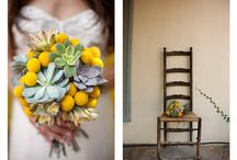 flowers...the real thing / by Sara Rivka Dahan