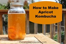 Booch & Other Ferments / Kombucha - How-to's, Fermented Drinks & Fermented Foods