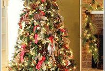 Oh Christmas Tree / by Jori Thompson