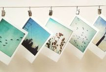 Polaroids and Instants