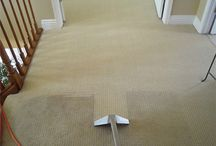 Carpet Cleaning / If you've been looking for a reliable carpet cleaning company in Adelaide than this is the right place. Our carpet cleaners Adelaide have many years of experience in providing our first class carpet cleaning services.