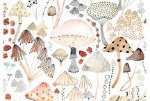 illustration : : nature, birds etc.