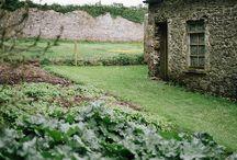 gardens / by krissy