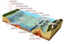 Ocean landforms/Phillip Science Project