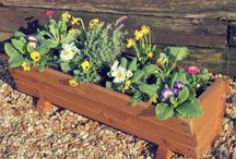 Planters We Love / A brief snapshot into our best planters, baskets and topiary we have to offer.