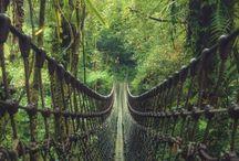 Dream places travel