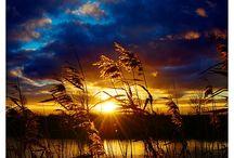 Beautiful / by Lisa Etie