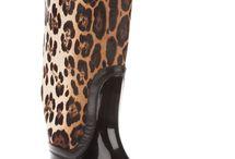beauty leopard 4