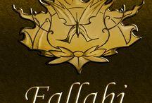 fallahi in dance / festival de dança do ventre e tribal fusion